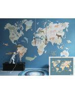 Wereldkaart IK2130